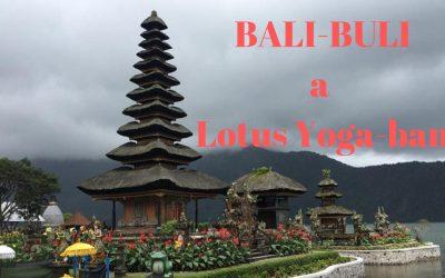 Bali-Buli VIP